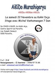 Stage animé par Michel Vanhomwegen-22-11-2014