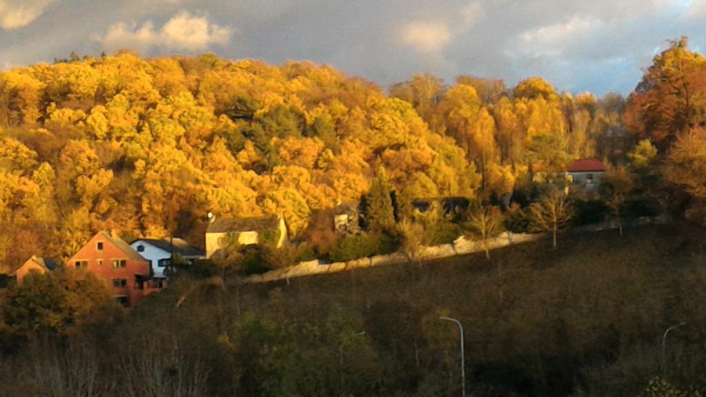 Couleurs d'automne au Dojo d'Aïkido de Namur (Floreffe)