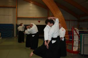 Kishinkaï Aïkido et fluidité du mouvement
